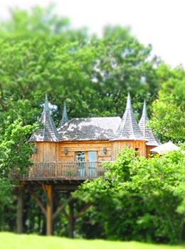 ch teaux dans les arbres cabane spa dans les arbres en dordogne. Black Bedroom Furniture Sets. Home Design Ideas