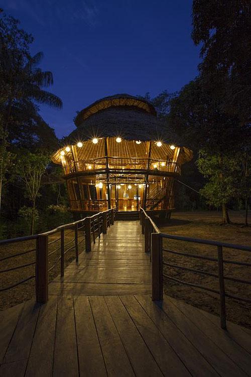 Treehouse lodge bungalows dans les arbres en for t for Hotel insolite