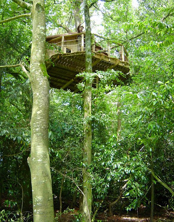 manoir du treuscoat cabane dans les arbres en bretagne. Black Bedroom Furniture Sets. Home Design Ideas