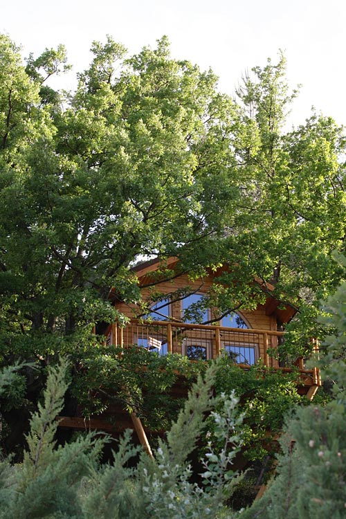 Cabane en Provence | Cabane dans les arbres en Provence - Alpes