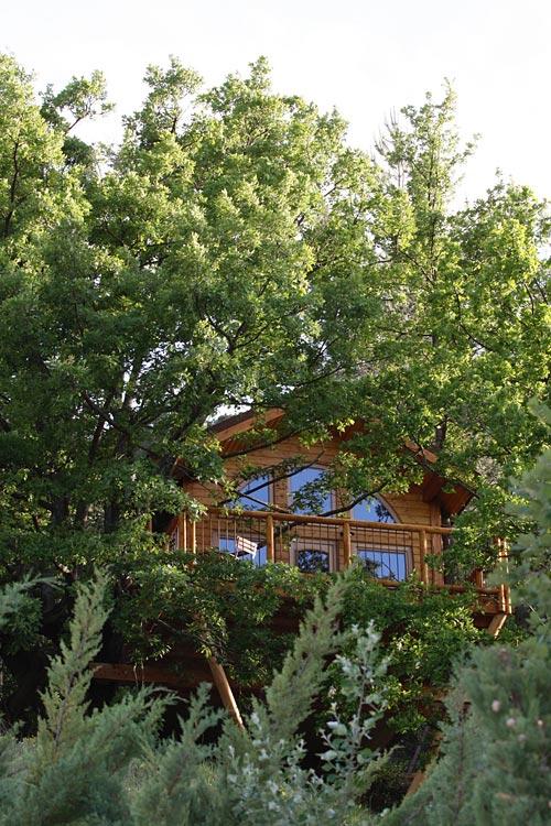 cabane en provence cabane dans les arbres en provence alpes. Black Bedroom Furniture Sets. Home Design Ideas
